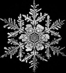 snowflake1[1]