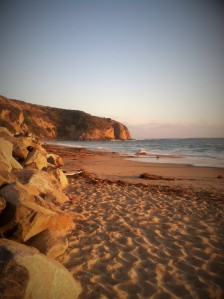 1danapoint (2)